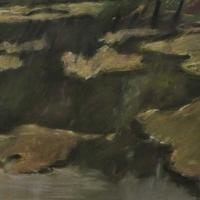 mucillagini-sullo-specchio-dellacqua-1986-cm-394x536