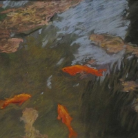 pesci-rossi-1986-cm-395x-538