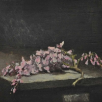 fragilit.-del-fiore-colto-1989-cm-32x35