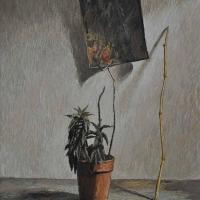 1la-pianta-del-metafisico-2003