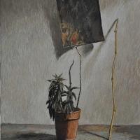 La-pianta-del-metafisico-2003